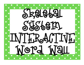 Skeletal System INTERACTIVE Word Wall