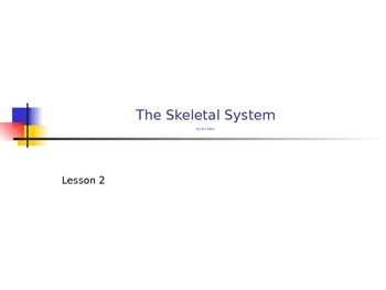 Skeletal System Lesson
