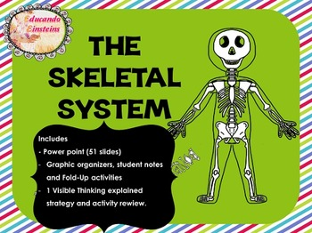 Skeletal System Pack: PowerPoint, Student Notes, Fold-Ups
