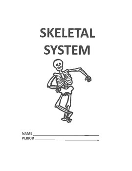 Skeletal System Unit Work