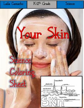 Skin color sheet