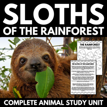Sloths of the Rainforest