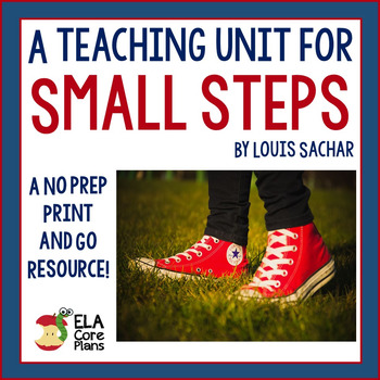 Small Steps Novel Activities, Handouts, Tests! Perfect for