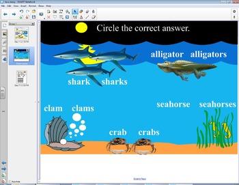 Smart Board Grammar: Plural Nouns