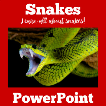Snakes PowerPoint | Snakes Science | Snakes Unit | Snakes