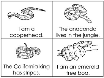 Snakes Early Emergent Reader Reading Activity Cards.