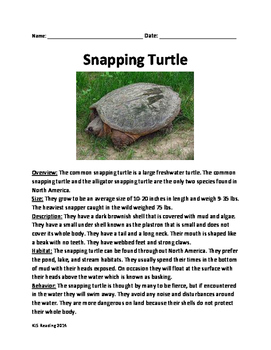 Snapping Turtle - Review Article Lesson Facts Information