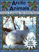 Polar Bear Activities: The Snow Bear & Arctic Animals Wint