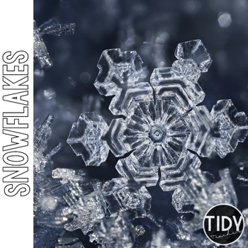 Snowflakes Online Scavenger Hunt PebbleGo Activity Sheet