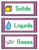 Solids, Liquids, and Gases:  States of Matter Sorting for
