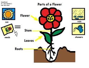 """Songboard - Dr. Jean's """"Parts of a Flower"""""""