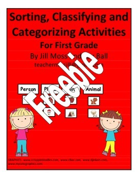 Sorting, Classifying, and Catagorizing Activities for Firs