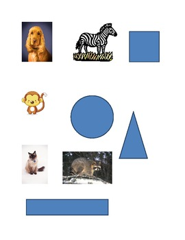 Sorting Shapes and Animals