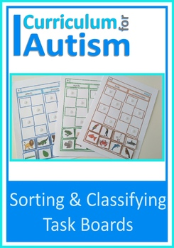 Sorting and Classifying Common Nouns, Autism, Special Educ