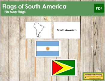 South American Flags: Pin Map Flags