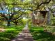 South Carolina History PowerPoint - Part I