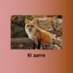 Spanish Animals Powerpoint