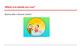 Spanish Basic Greetings 104 Slide Presentation
