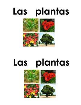 Spanish Guided Reading Book - Las plantas