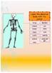Spanish Halloween activity booklet for beginners
