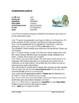 Spanish Intermediate Reading Bundle ~ Lecturas para intermedios