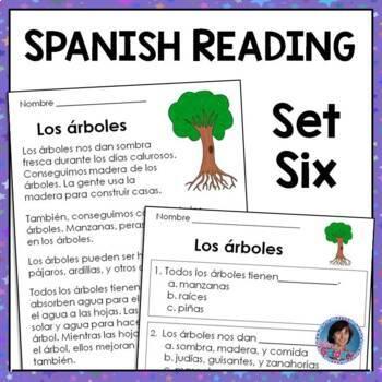 Spanish Reading Comprehension Passages ~ Level Six