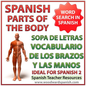Spanish Vocabulary Parts of the Arm and Hand - Spanish Wor