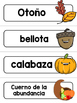 Spanish Word Wall Cards {Thanksgiving} ESPAÑOL Día de Acci
