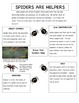 Spider Non-fiction Articles and Questions