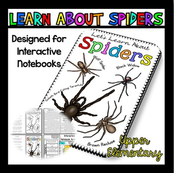All About Spiders: Spiders Reading Passage: Perfect for In