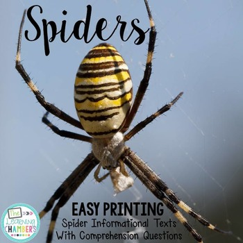 Spiders Informational Texts: Main Idea, Comprehension Ques