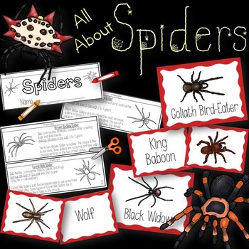 Spiders Book to Cut and Create, Matching Cards for Centers