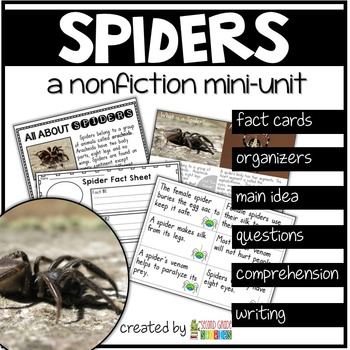 Spiders Nonfiction Reading