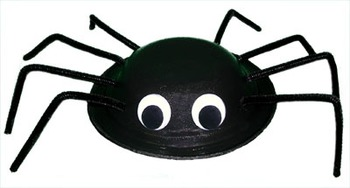 Spiders in the classroom!