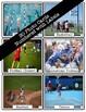 Sports Vocabulary Photo Flashcards