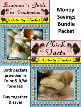 Spring Science Activities: Chick Facts & Incubation Guide