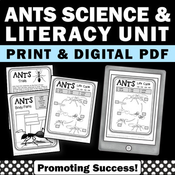 Ants Life Cycle No Prep Science Worksheets for Spring or S