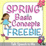 Spring Basic Concepts FREEBIE