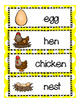 Spring Chickens!  A Spring and Life Cycle of a Chicken  Le