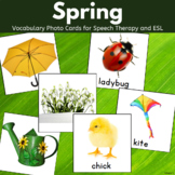 Spring Vocabulary Photo Cards for Speech Therapy and Special Ed