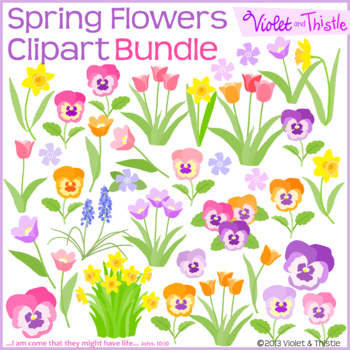 Spring Flowers BUNDLE Color Clipart Flower Tulip Daffodil