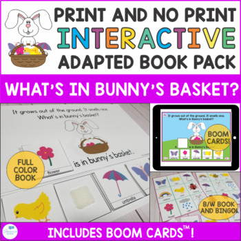 Spring Interactive Book and Activities - What's in Bunny's