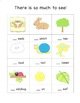 Initial Consonant Sounds, Counting & Sorting Activity for
