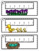 Spring Measurement and Line Plots Scoot