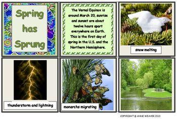Spring Photos Flashcard Set