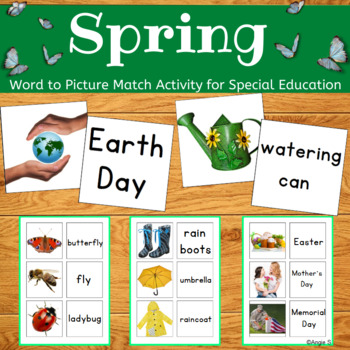 Spring  Word to Picture Matching Activity