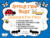 Springtime Bugs - Kindergarten - First - Second -