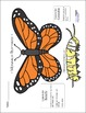 Springtime Monarch Butterfly Science and Art Activity