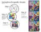 Springtime Mosaic Bundle - Interactive Coloring Sheets But