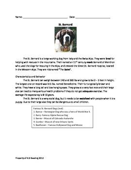 St. Bernard - Dog Review Article Questions Facts Vocabular